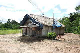 Caban in Amazonia