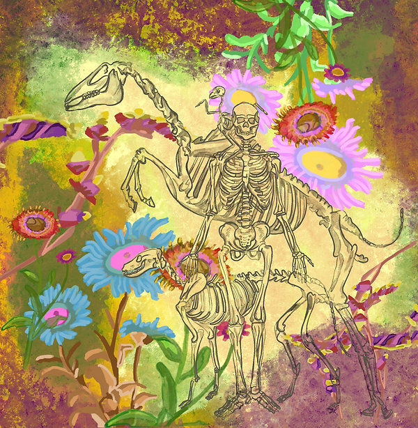 Illustration, person skeleton, dog skeleton, horse skeleton, bird skeleton with flowers