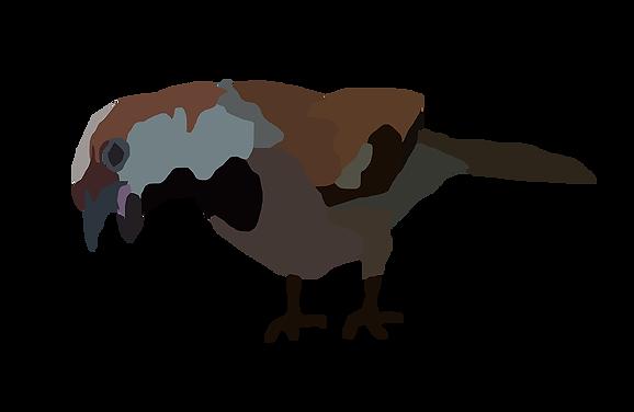 Illustration of a bird in berlin Emy Sato Illustration - @ilustreemy