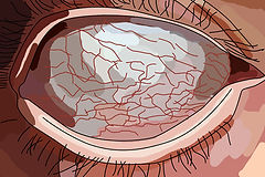 rolled eye illustration, emy sato @ilustreemy