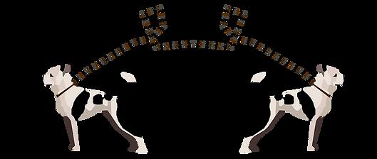 Pitbull illustration