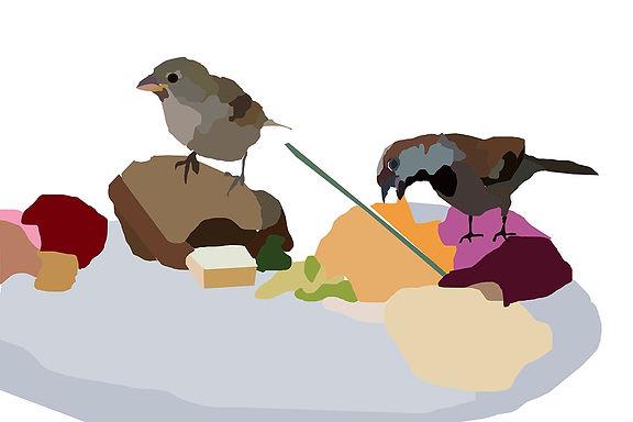 birds eating in a plate illustration, berlin. Emy Sato illustration @ilustreemy