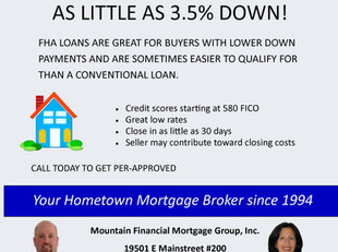 Purchase a home with as little as 3.5% down!