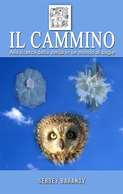 IL CAMMINO E-Book