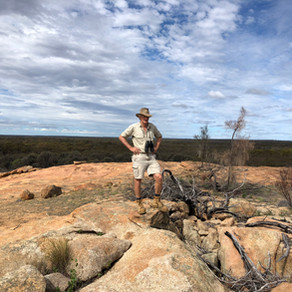 Explore the Great Western Woodlands with Great Southern Outback Tours