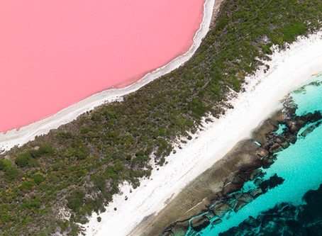 Why is Lake Hillier bubble gum pink?