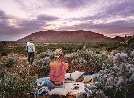 Where to find the best wildflowers in the Gascoyne Murchison