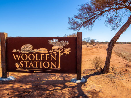 True outback hospitality at Wooleen Station