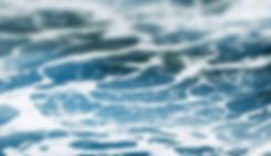 cia_das_algas_site_sea.png