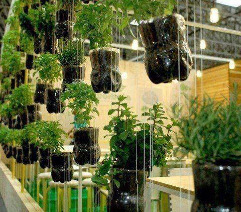 horta e jardim vertical em garrafas pet