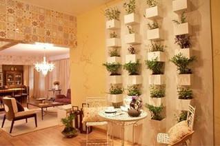 Horta e Jardim Vertical: como plantar, regar e instalar gastando pouco