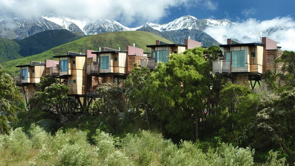 Outro hotel em casas de árvores: Hapuku Lodge