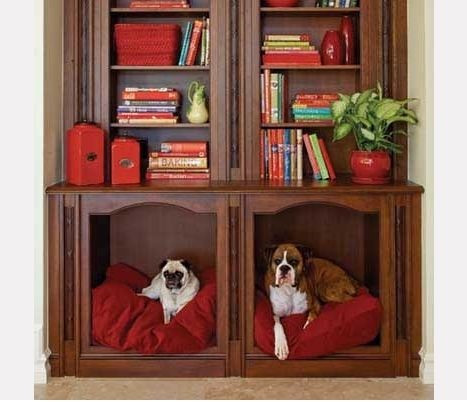 nichos de móveis adaptados para o seu PET