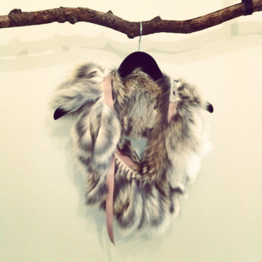 Coyote fringe collar