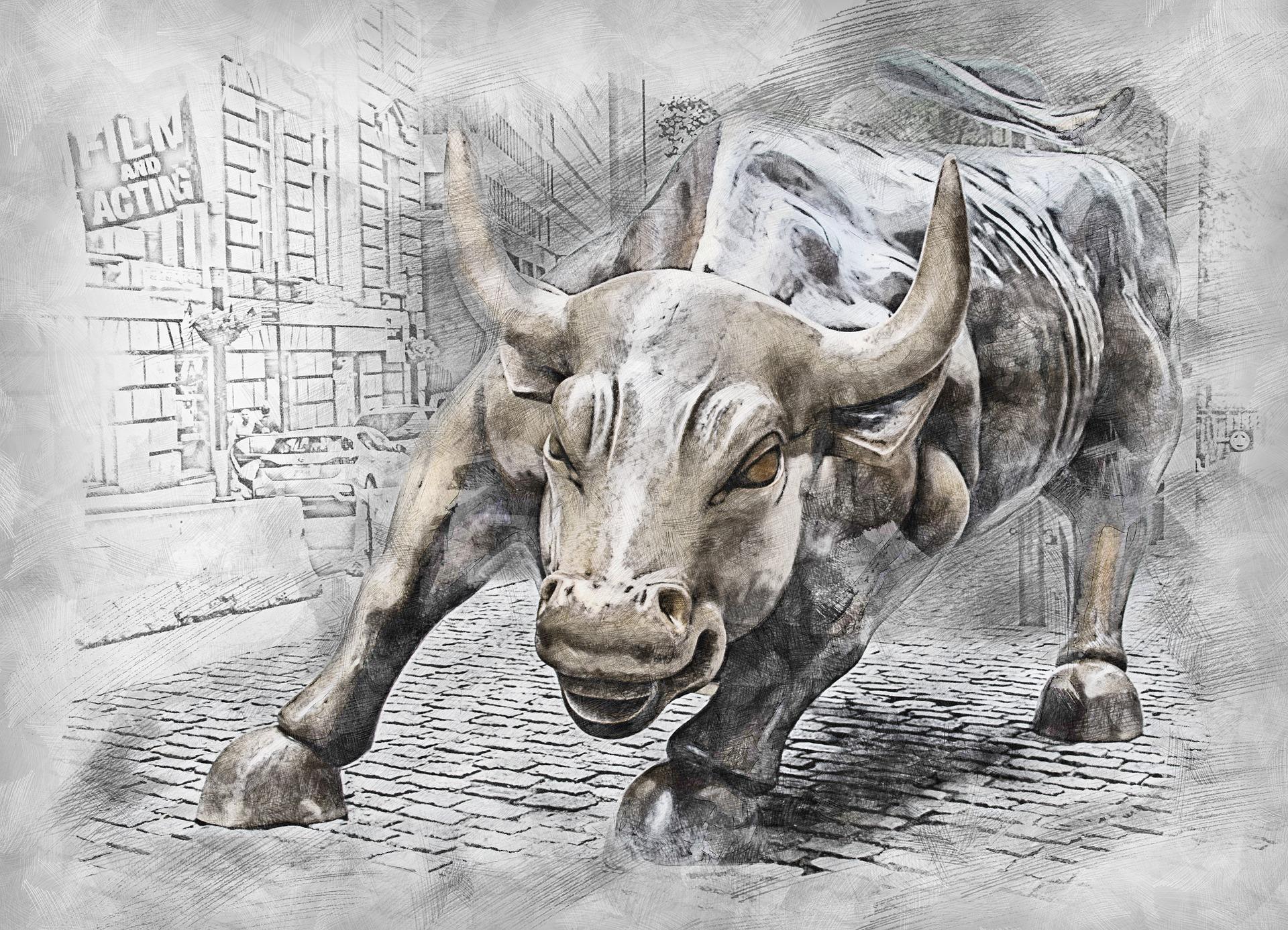 bull-3112617_1920