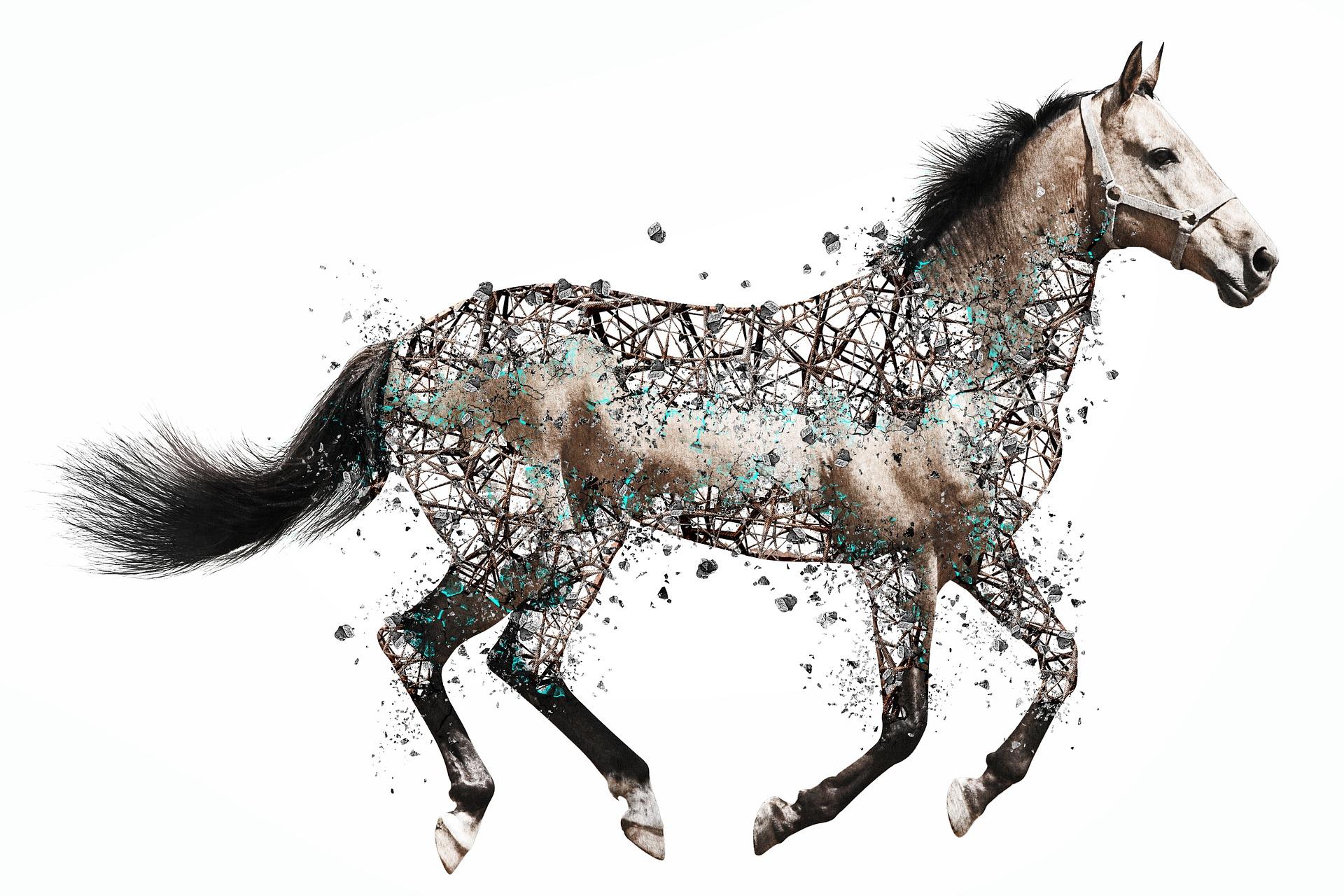 horse-3213024_1920
