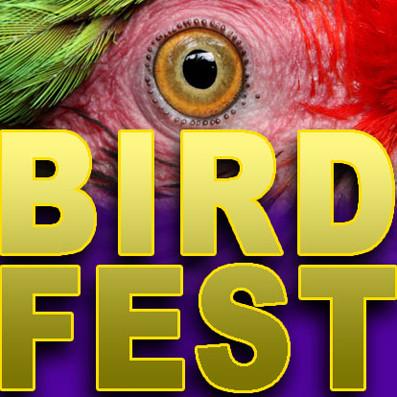 Birds for sale | birdfest