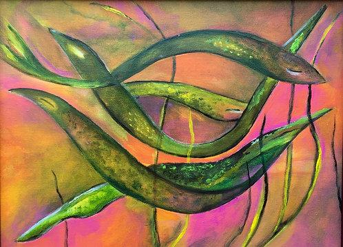 Recreo De Anguilas
