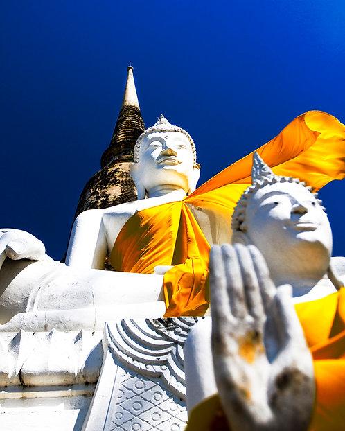 BUDDAH AND BLUE SKIES