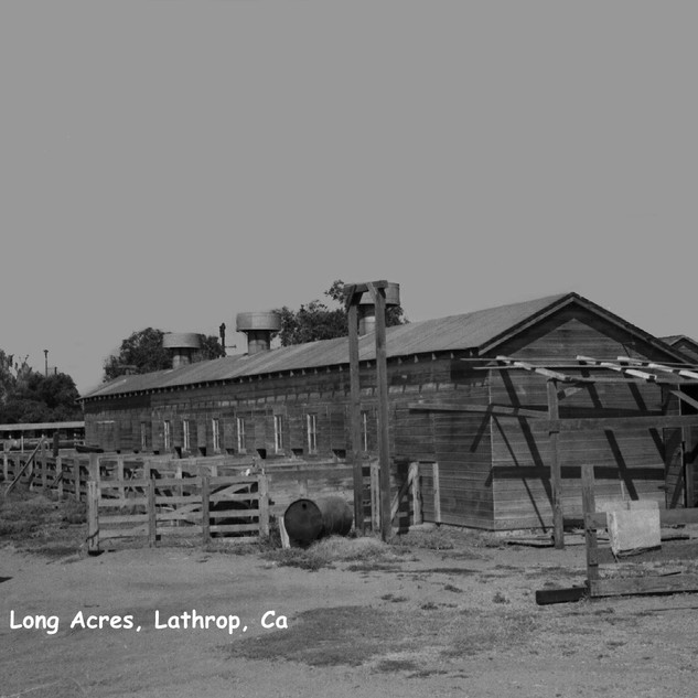 Long Acres