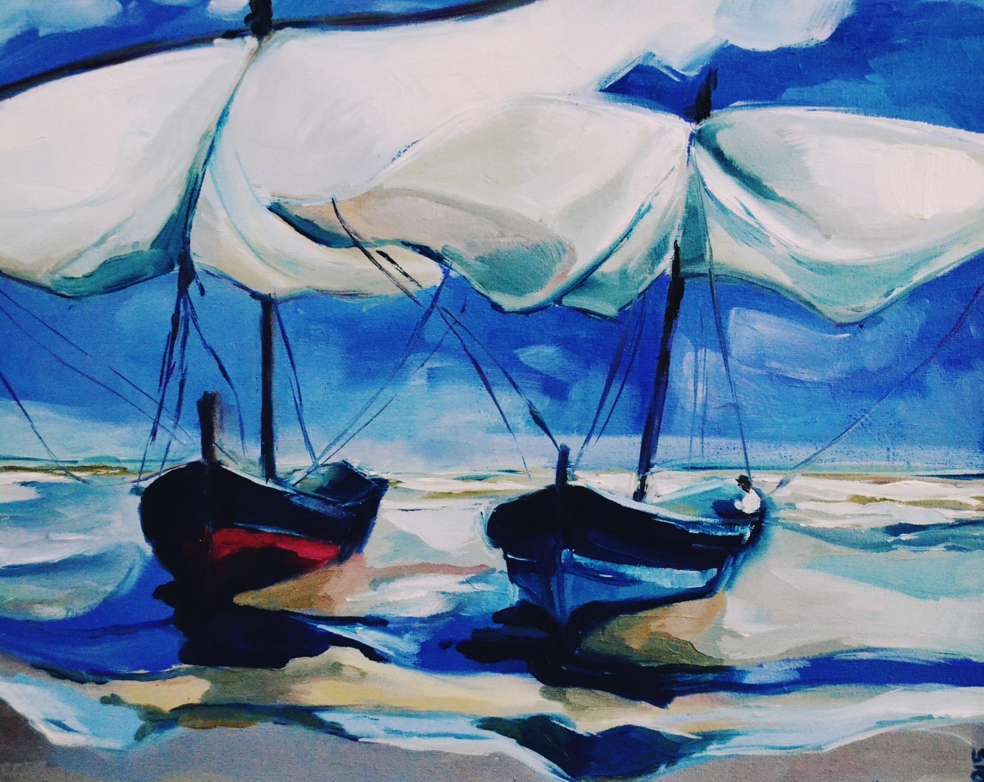 Barcos del sur