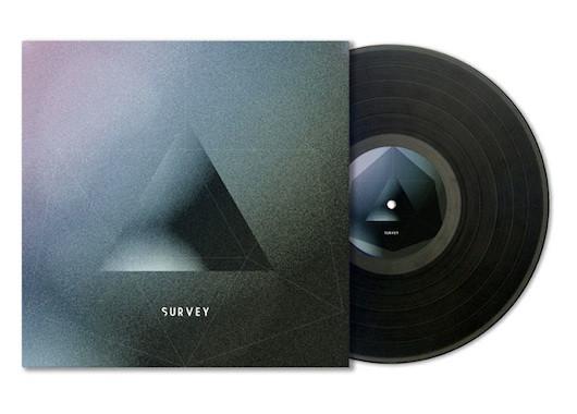survey-vinyl_o.jpg