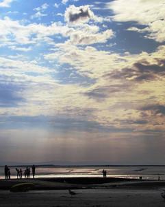 Lifeforms by the Sea  Fading shoreline a