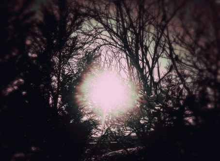 The Sun Wept, Cold (Morning Attack)