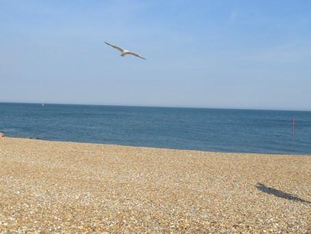A Beach at Peace