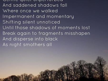 Shadows At Dusk