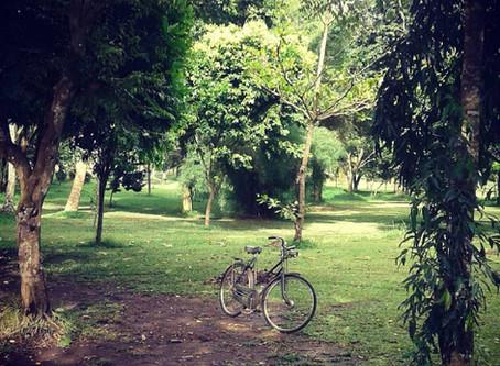 Sepeda Kesepian / Lonely Bicycle