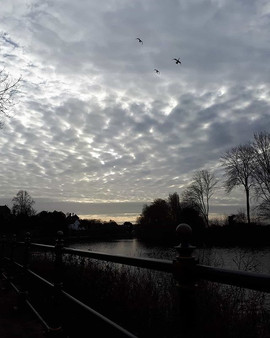 Bird Clouds  Down by the River Severn, W