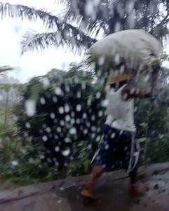 Play  Rain stops play But it seldom stop