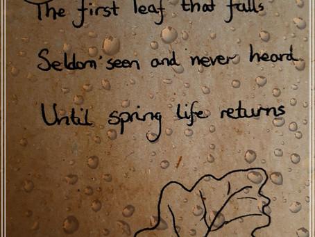 Leaf ~ Haiku