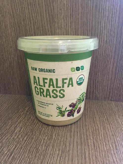 Alfafa Bere Organics en Polvo
