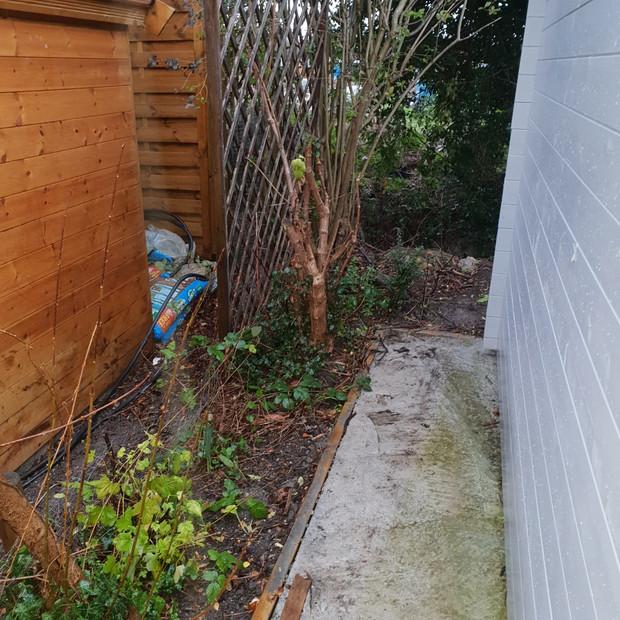 Befire at rear of garden
