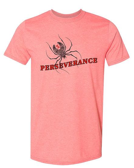 210324.1 Perseverance (@theblackspiderman)