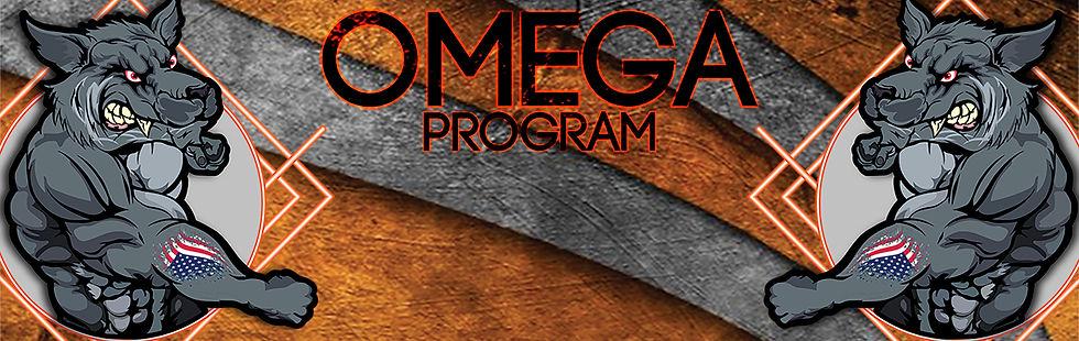 omega program banner 2.jpg