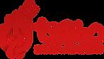San3a Academy Logo