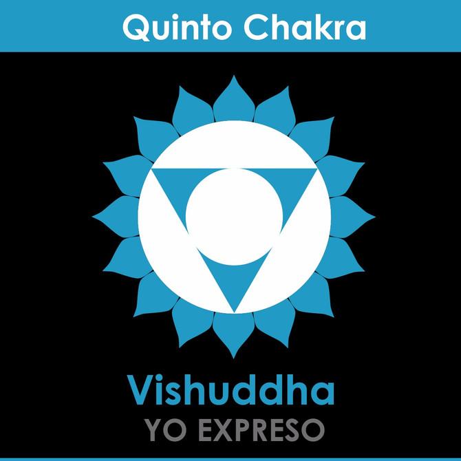 El quinto Chakra: Vishudda Chakra (Chakra de la Garganta)
