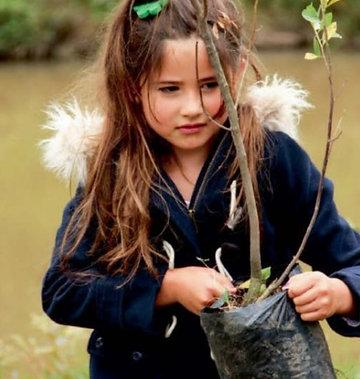 Contribuye a la preservación de los bosques