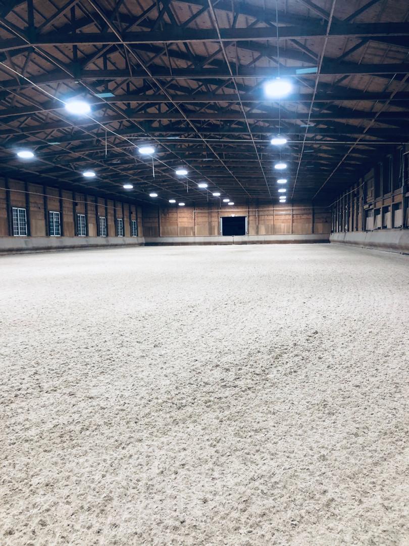 ArenaMend Indoor Vertical