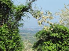 panorama da san lorenzo