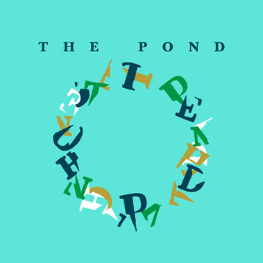 THE POND debut's album is out!