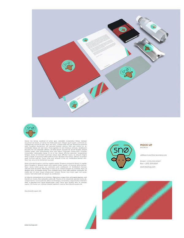 sno deer material mockups for snowboard company graphic design project