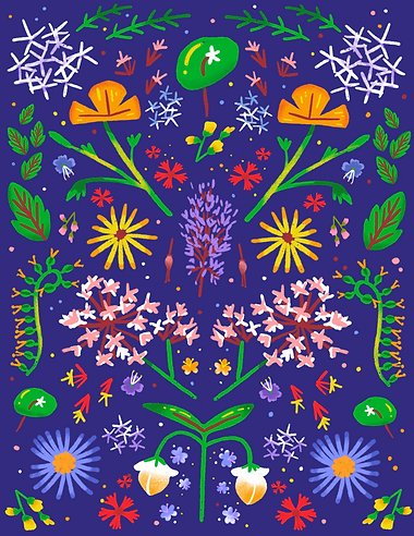 flower illustration in procreate by stephanie huang