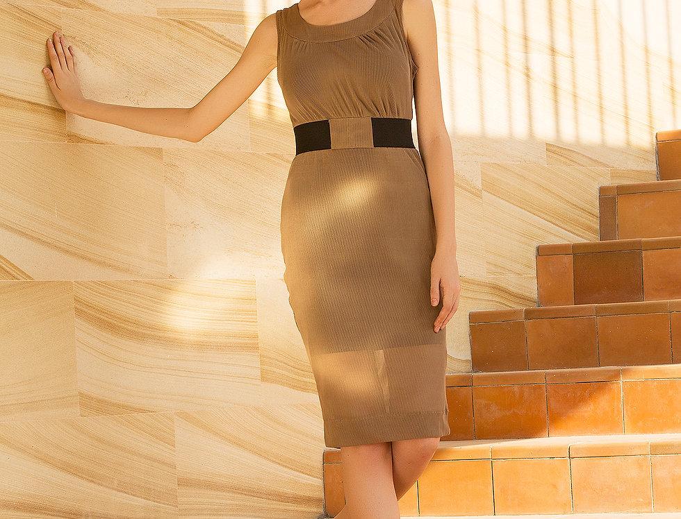 Divinity Mesh Midi Dress