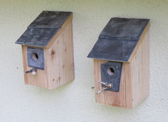 Pair of Bird Boxes - 25 mm hole & 32 mm hole