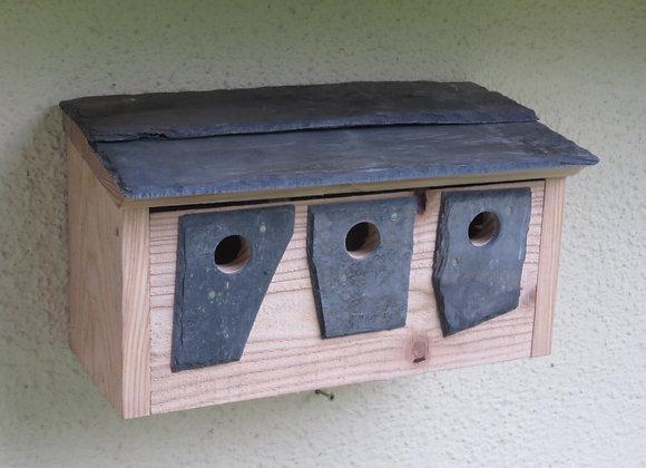 Sparrow Terrace / Sparrow Hotel