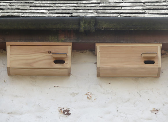 2 x Swift Boxes